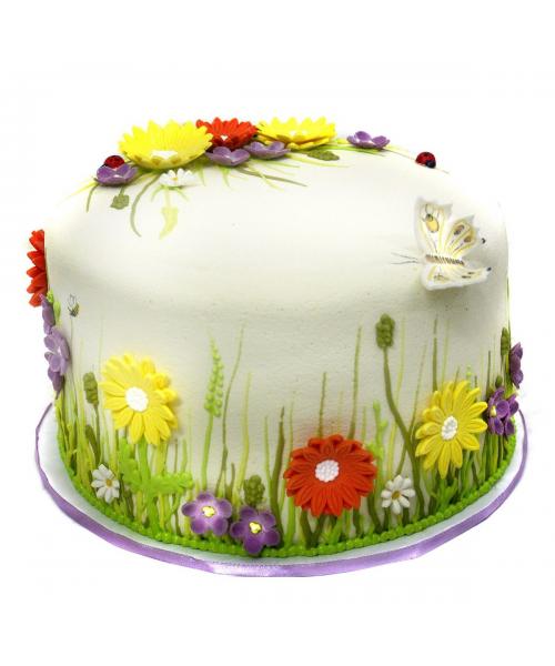 Детский торт с полевыми цветами и бабочкой